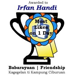 Most Likes on One Day: Irfan Handi