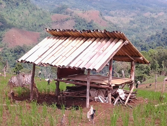 Hateup saung tina talahab