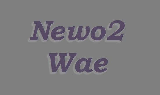 Newo-newo wae