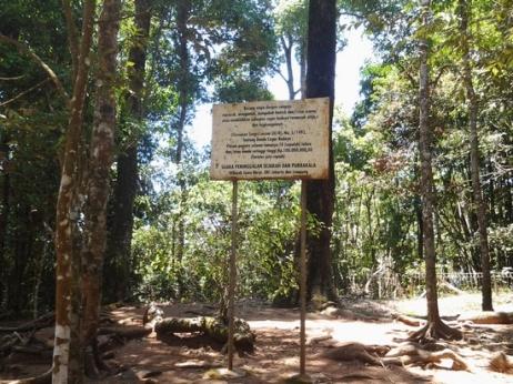 Plang pangwawadi